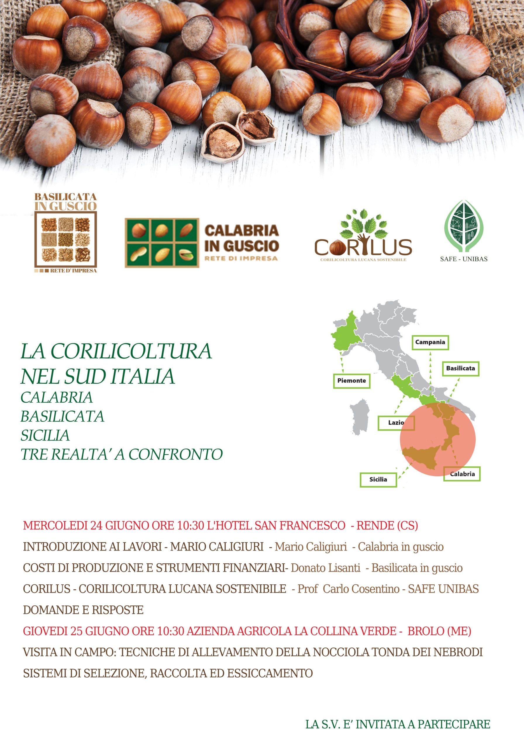 La Corilicoltura nel Sud Italia: Calabria, Basilicata e Sicilia tre realtà a confronto